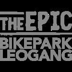 BikePark_Leogang_grey